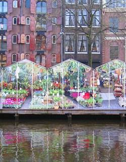 Drijvende Bloemenmarkt