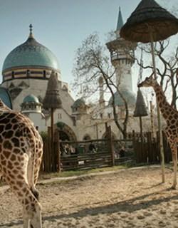 Zoo van Boedapest