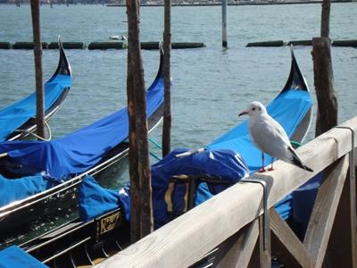 Gondeltocht Venetië: een trip om bij weg te dromen