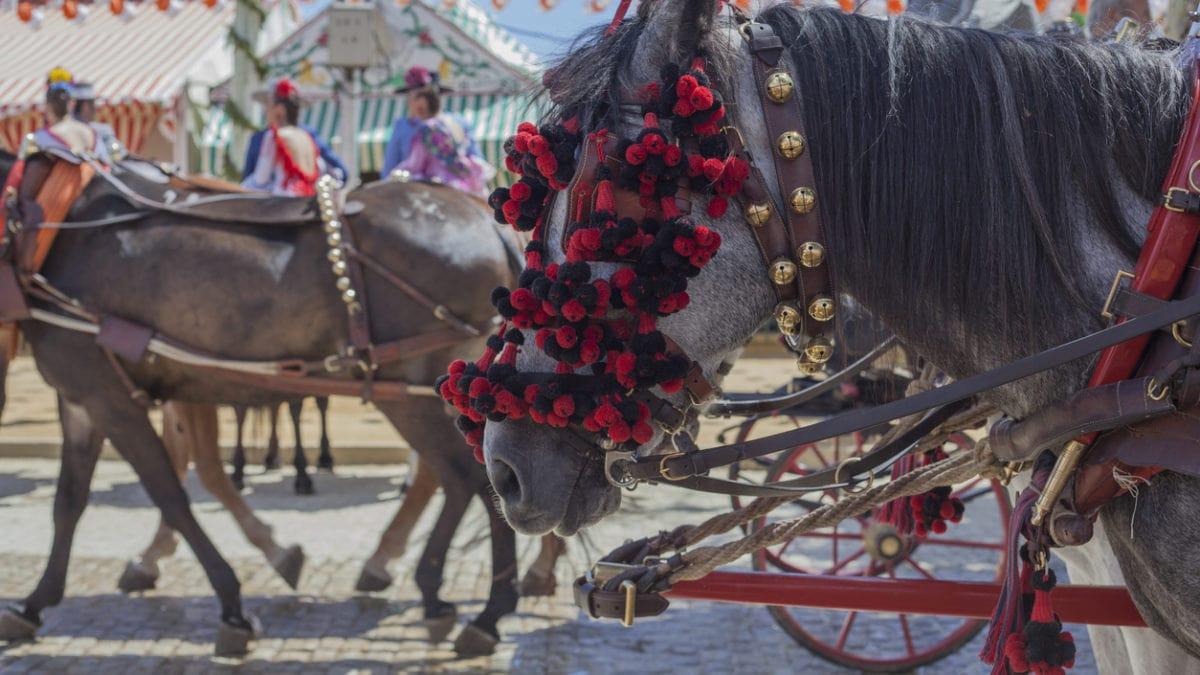 5 van de leukste evenementen in Sevilla