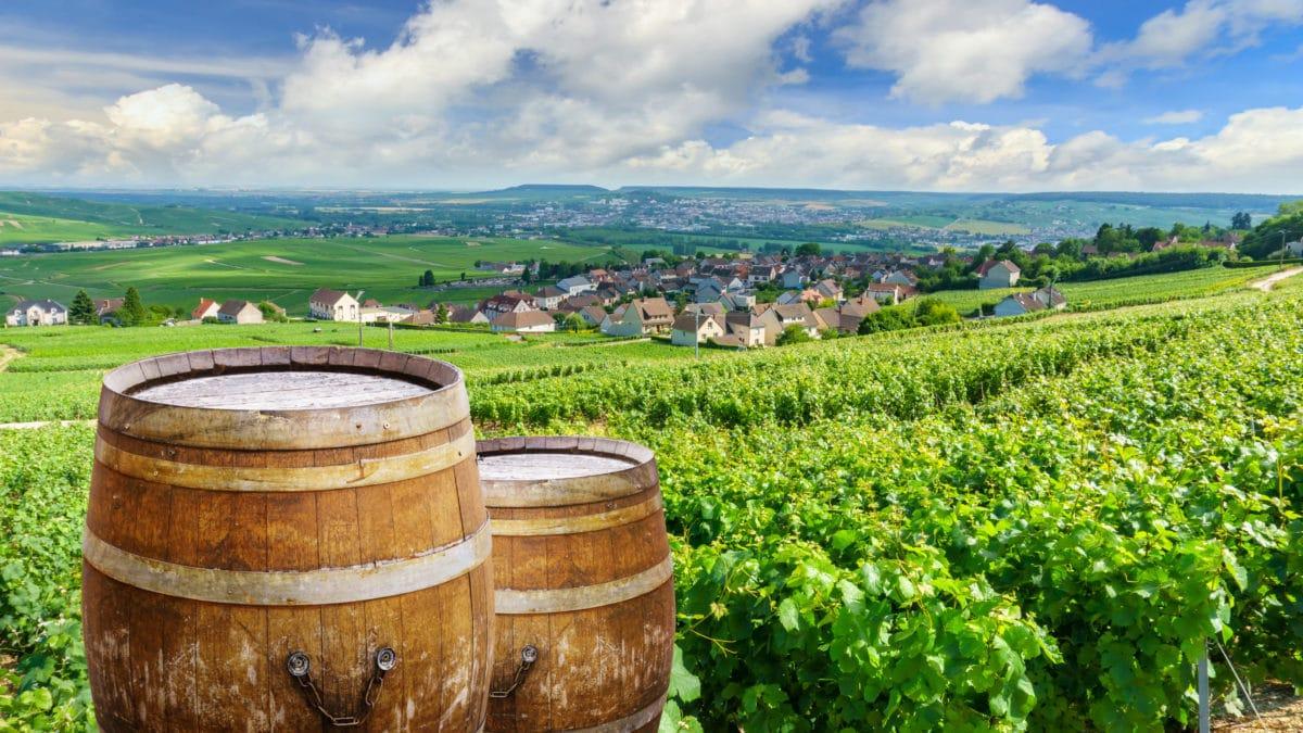 De beroemde champagnekelders van Reims