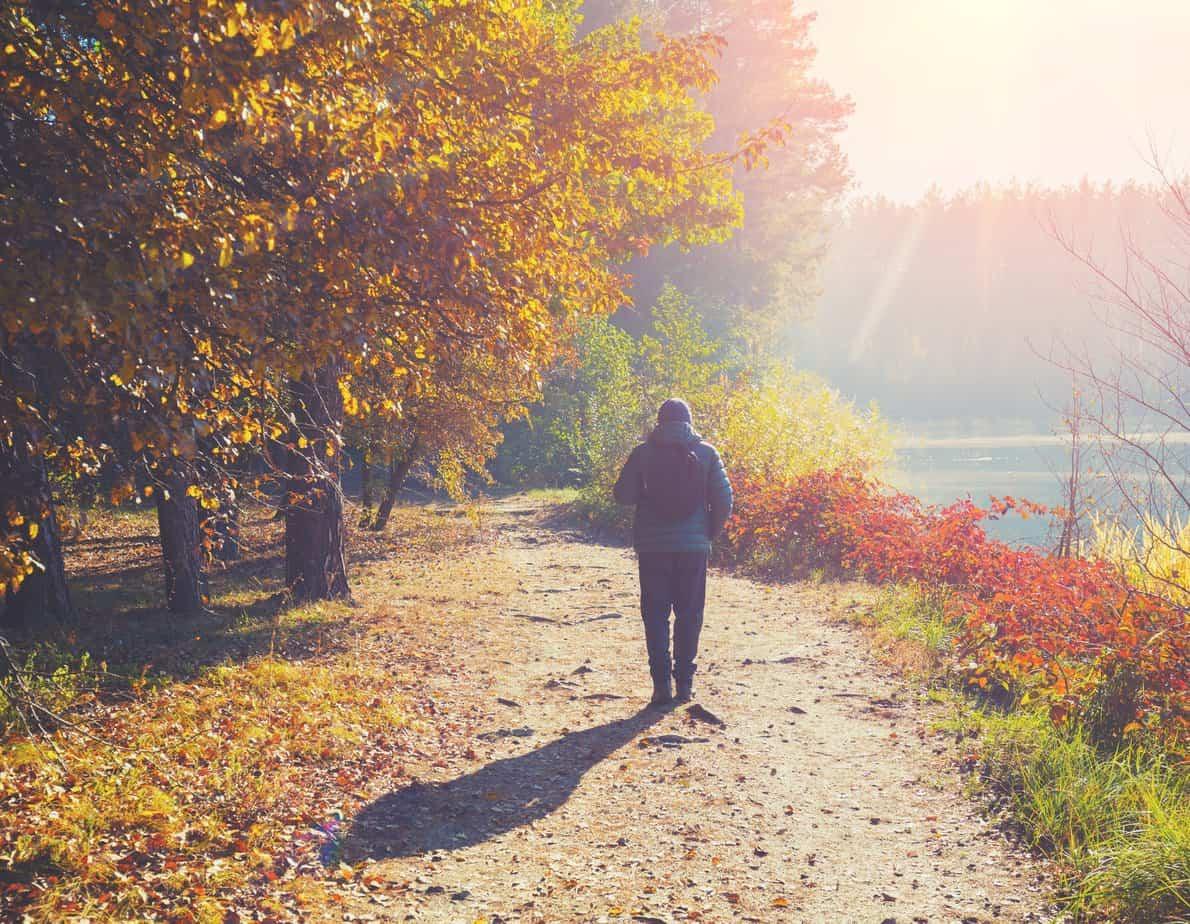 man wandelt in bos
