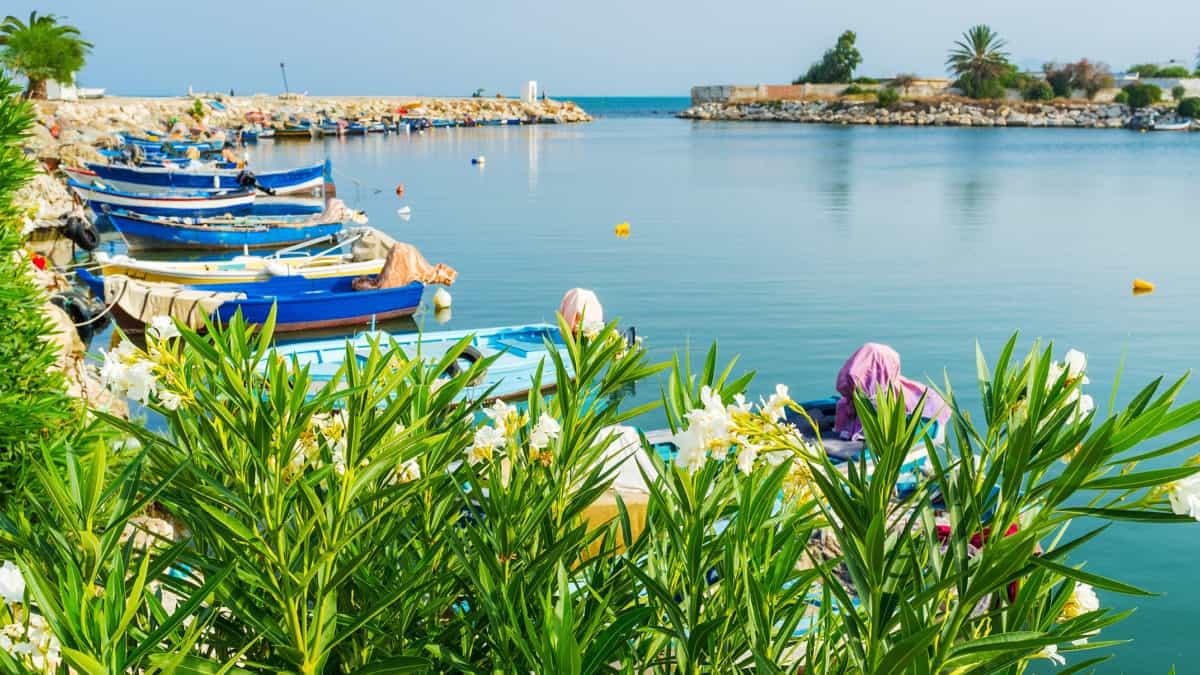 Klein maar (heel) fijn, ontdek Tunesië