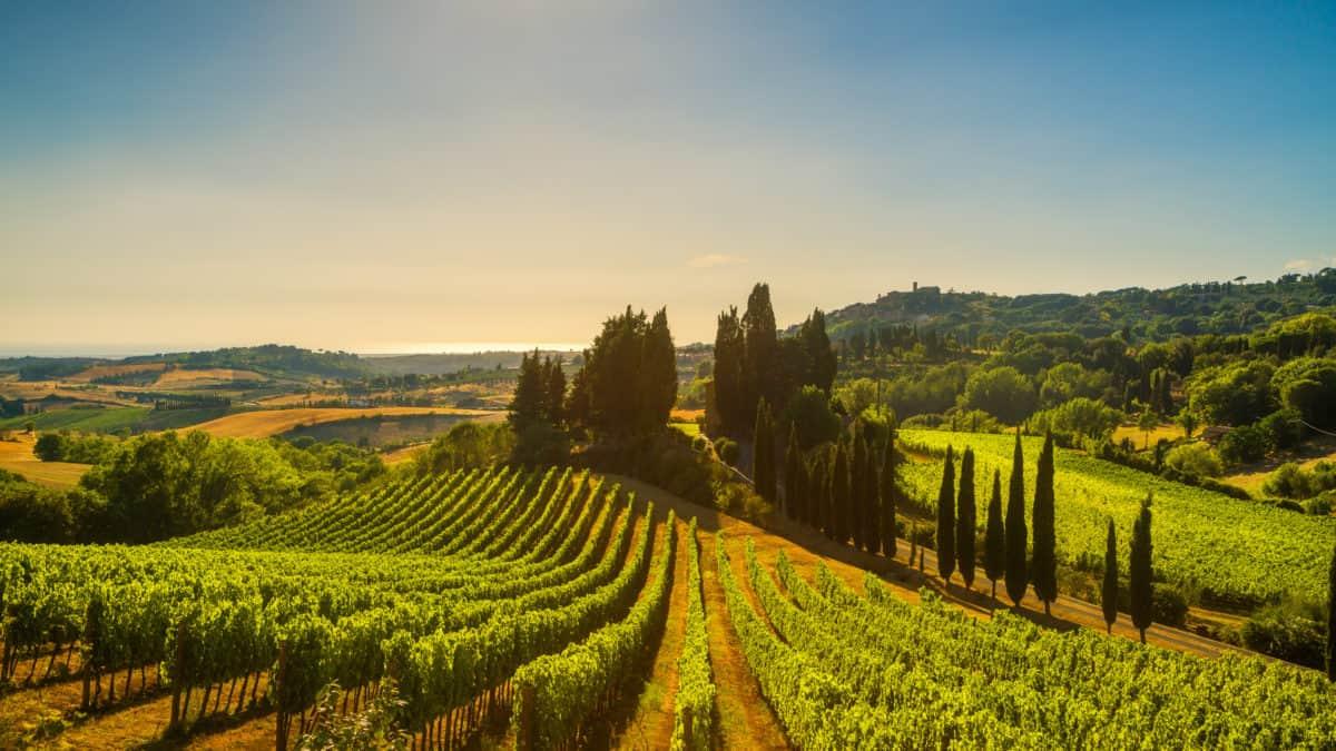 Alles wat je niet wist over Italië