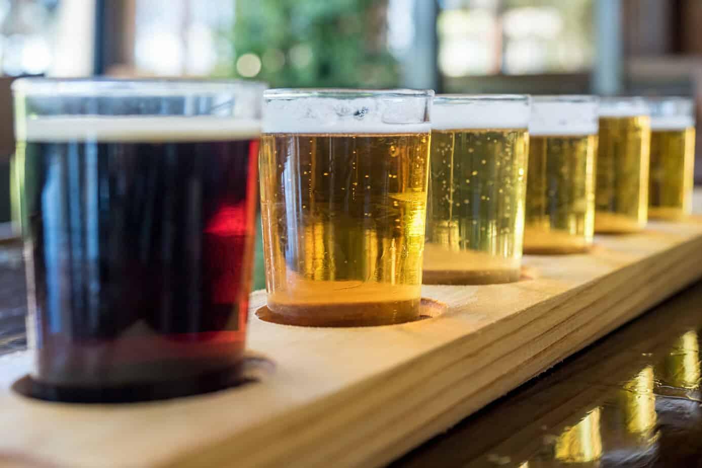 Leuven beer