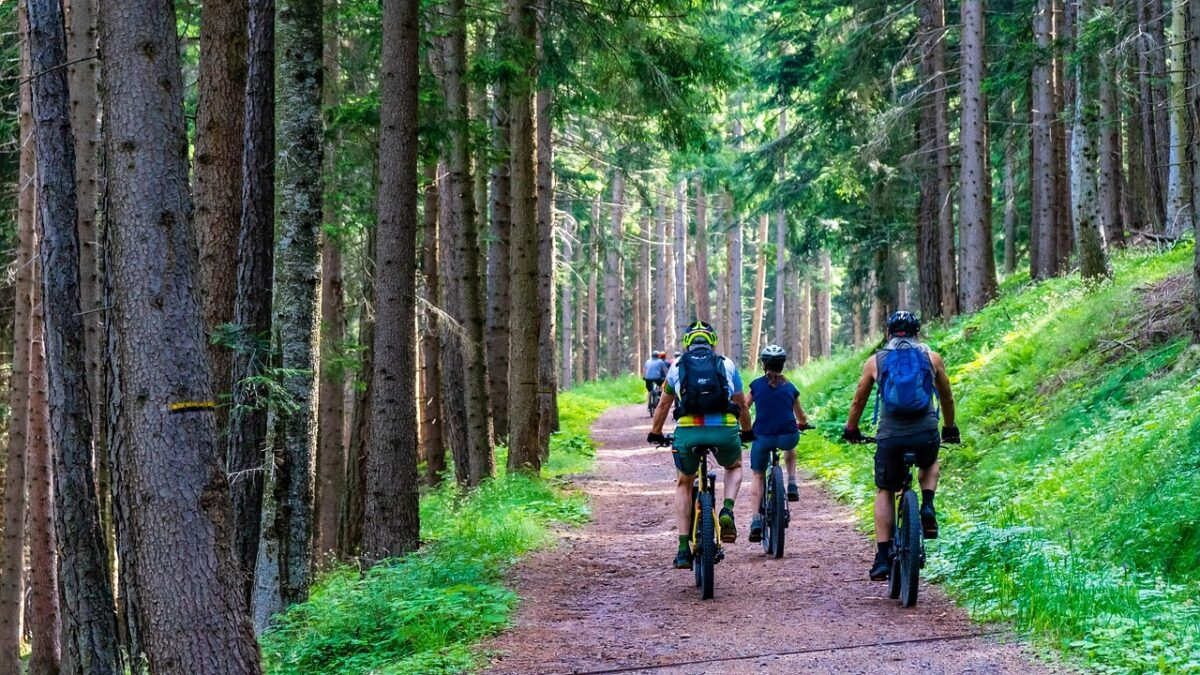 Mountainbiken in de Ardennen: 6 beste trails